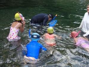 魚探しに子どもも大人も夢中でした